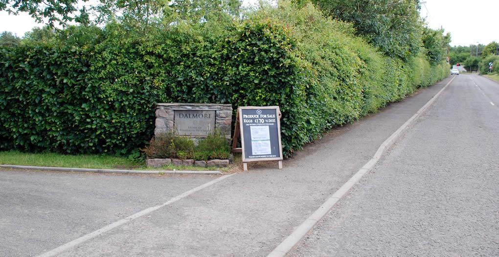 Entrance to Dalmore