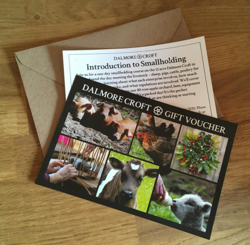 Introduction to Smallholding gift voucher